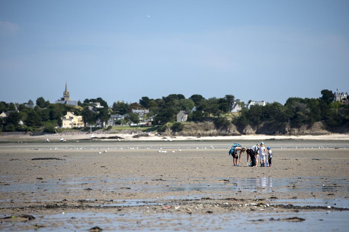 Sortie Pêche à pied à Saint-Jacut-de-la-Mer